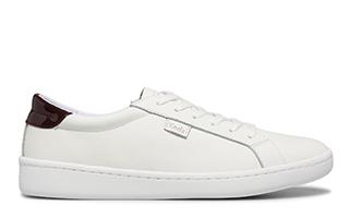 Ace Leather shoe.