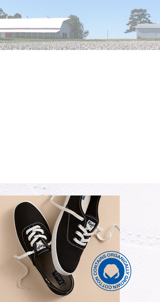 Keds Champion sneakers in black. An organic cotton field.